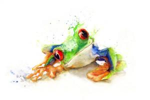 HS-Frosch